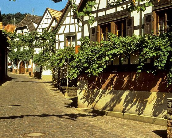 Westernreiten oberhausen